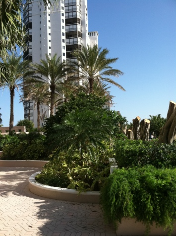 High-rise landscaping